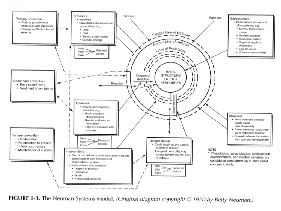 """nursing practice and betty neuman systems theory Betty neuman's system model provides a comprehensive flexible """"using the neuman systems model for best the force of nursing theory guided- practice."""